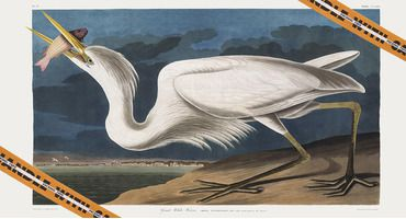 «Фирменные рисунки» Heron Preston